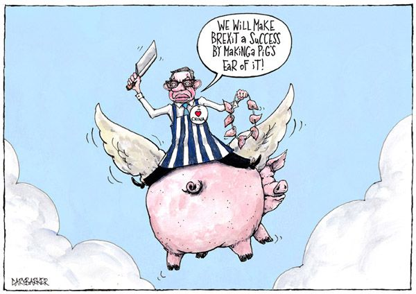 Pig Michael Gove cartoon