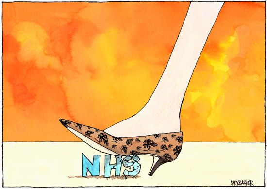 Theresa May NHS cartoon